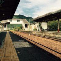 image-45-500x333